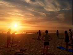 Vegan Surf Camp